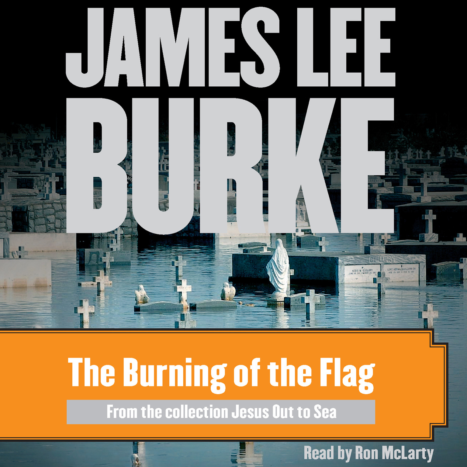 Printable The Burning of the Flag Audiobook Cover Art