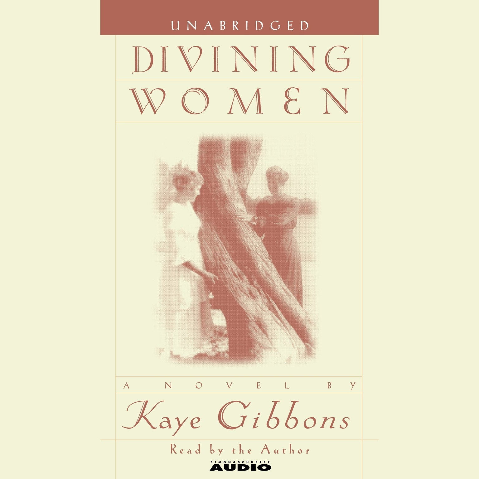 Printable Divining Women Audiobook Cover Art