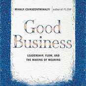 Good Business: Leadership, Flow and the Making of Meaning, by Mihaly Csikszentmihalyi