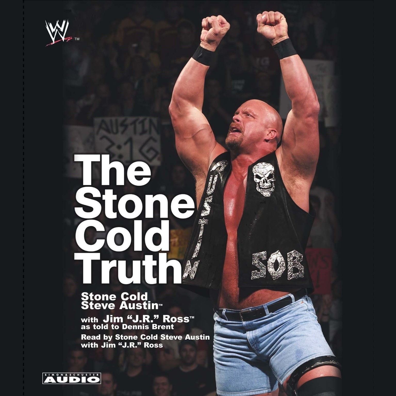 Printable The Stone Cold Truth Audiobook Cover Art