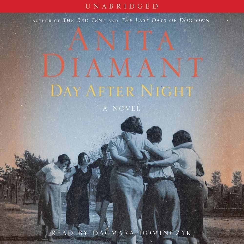 Printable Day After Night: A Novel Audiobook Cover Art
