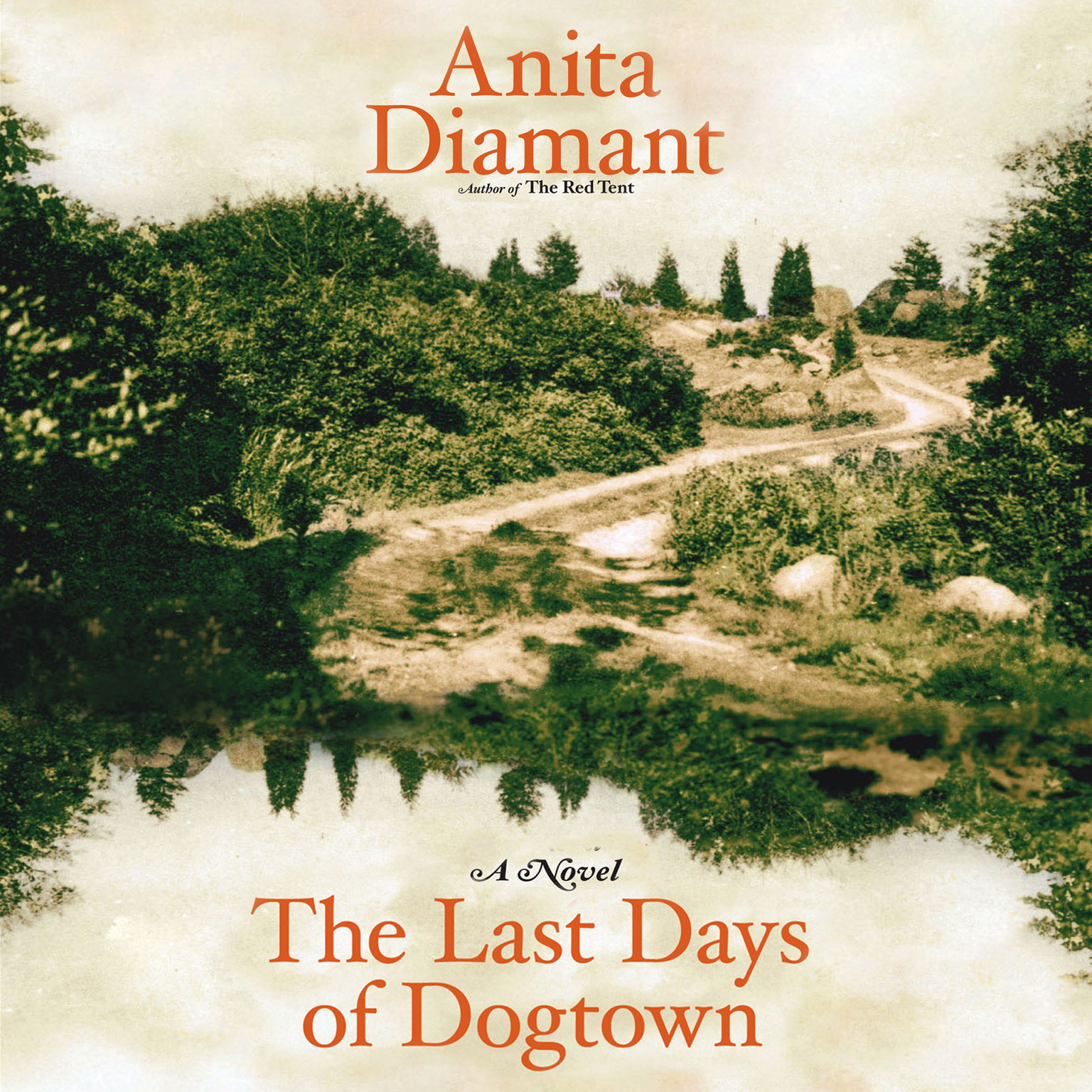 Printable The Last Days of Dogtown: A Novel Audiobook Cover Art
