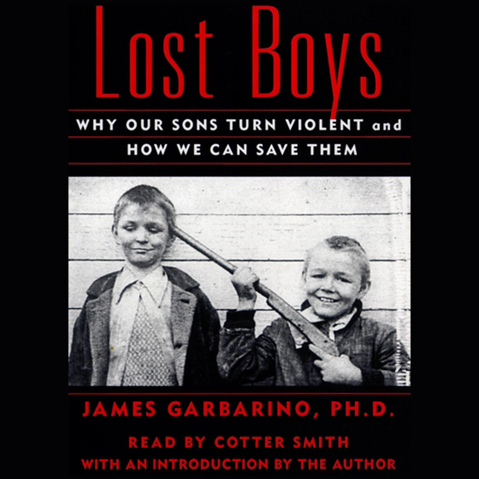 Printable Lost Boys: Why Our Sons Turn Violent and How We Can Save Them Audiobook Cover Art