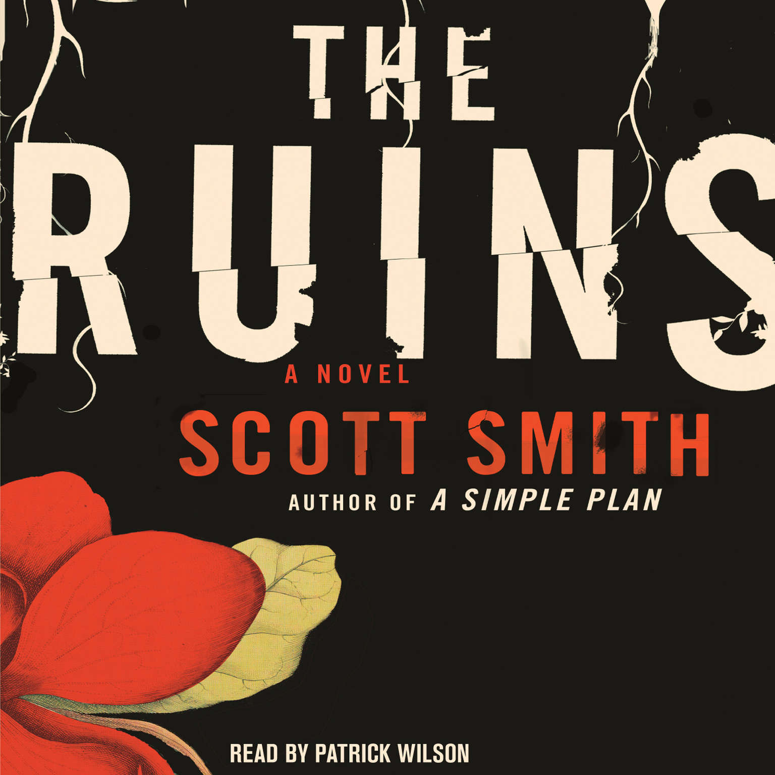Printable The Ruins Audiobook Cover Art