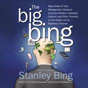 The Big Bing Audiobook, by Stanley Bing