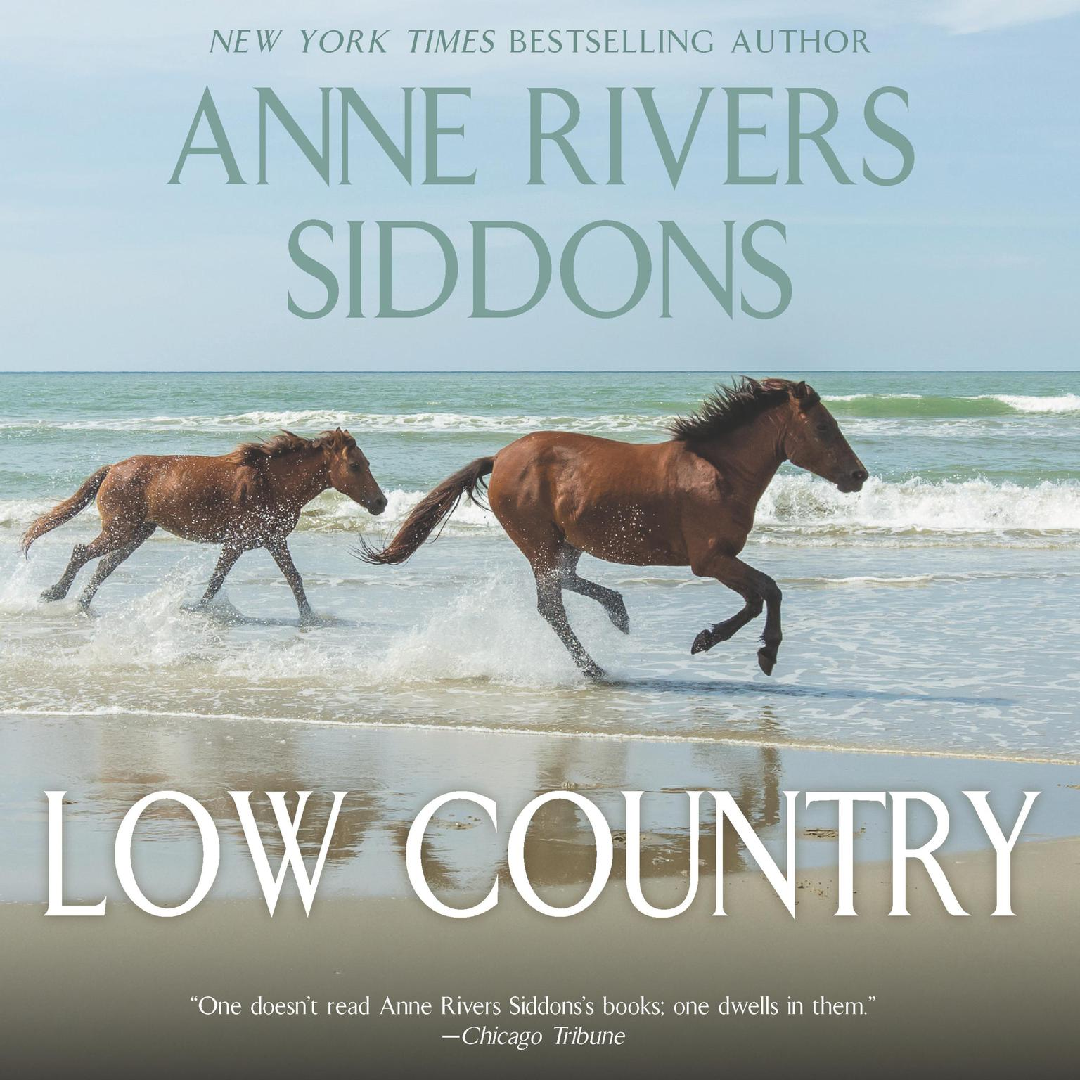 Printable Low Country Audiobook Cover Art
