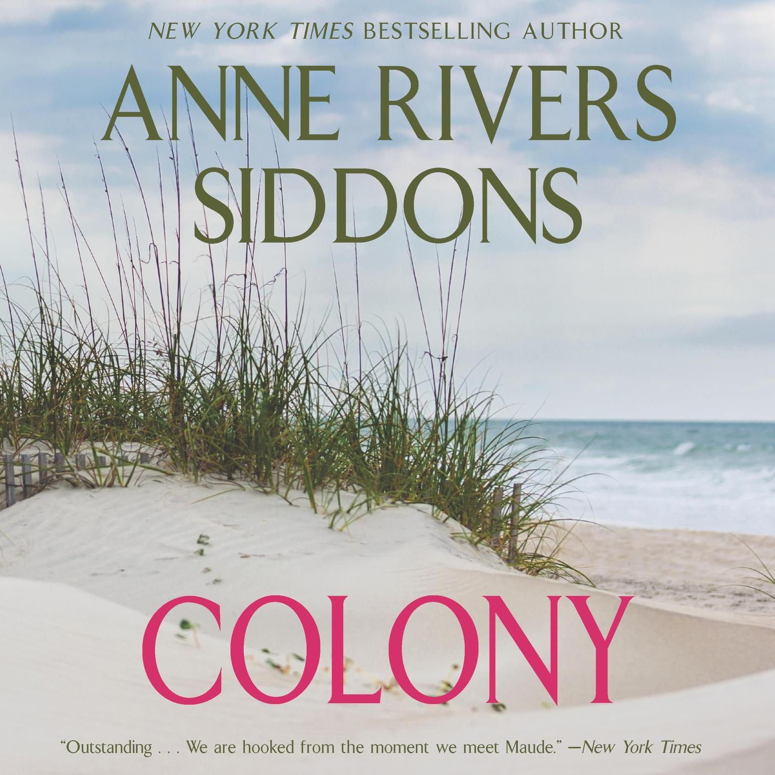 Printable Colony Low Price Audiobook Cover Art