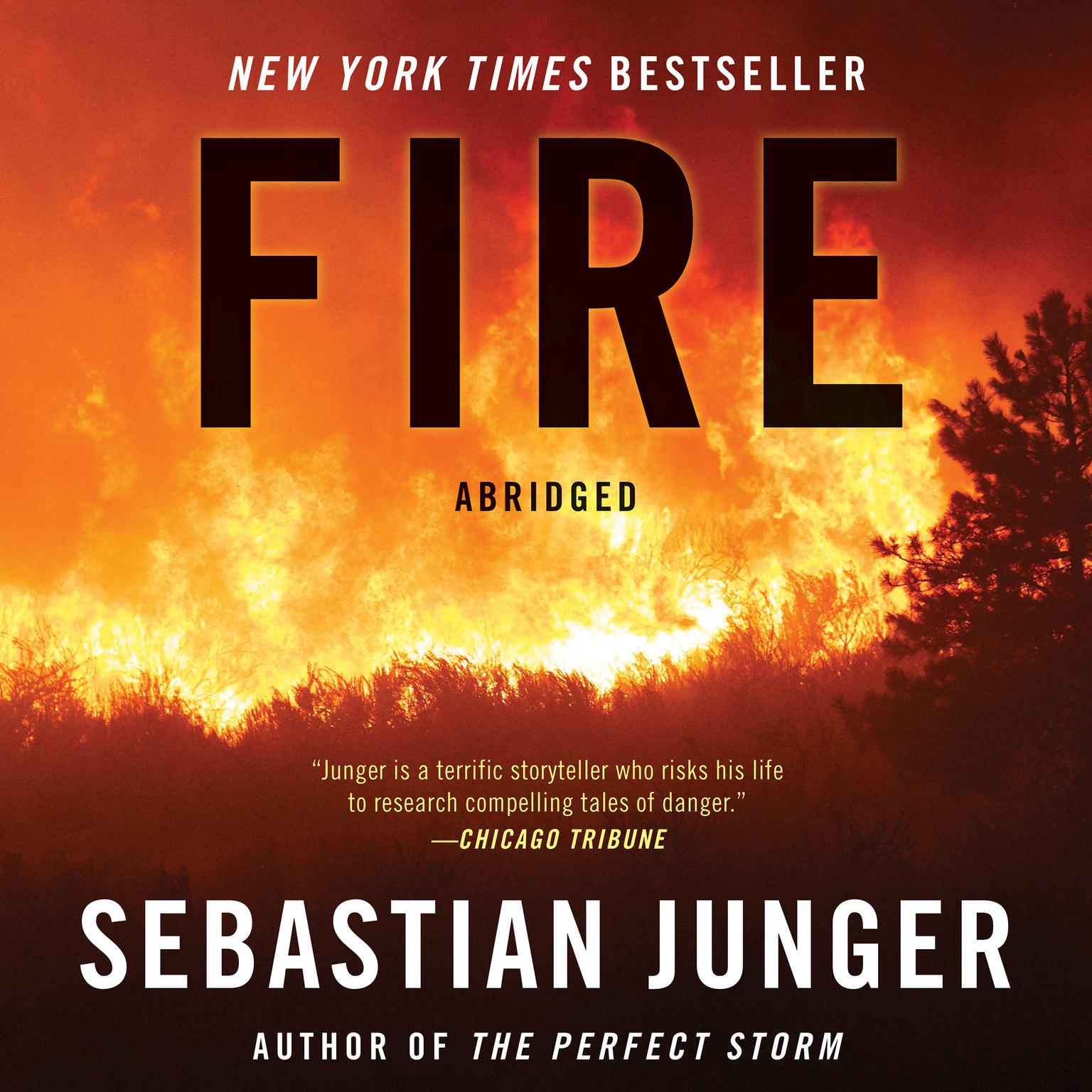 Printable Fire Audiobook Cover Art