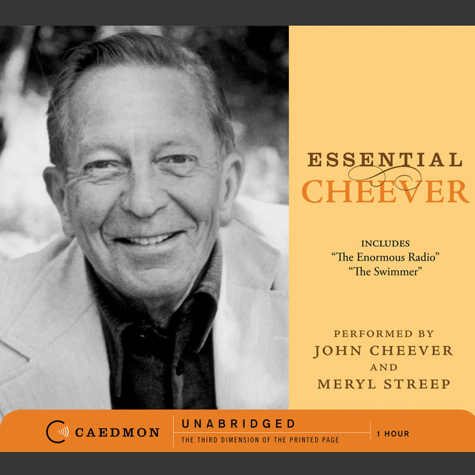 the swimmer by john cheever analysis essay Read this essay on an analysis of the swimmer by john cheever come browse our large digital warehouse of free sample essays get the knowledge you need in order to pass your classes and more.
