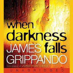 When Darkness Falls Audiobook, by James Grippando