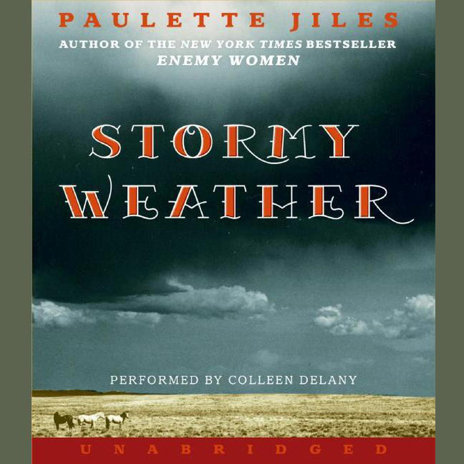 Printable Stormy Weather Audiobook Cover Art