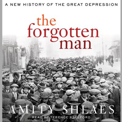 The Forgotten Man: A New History Audiobook, by Amity Shlaes