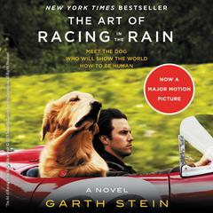 The Art of Racing in the Rain Audiobook, by Garth Stein