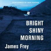 Bright Shiny Morning, by James Frey