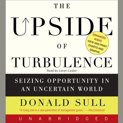 The Upside of Turbulence Audiobook, by Donald Sull