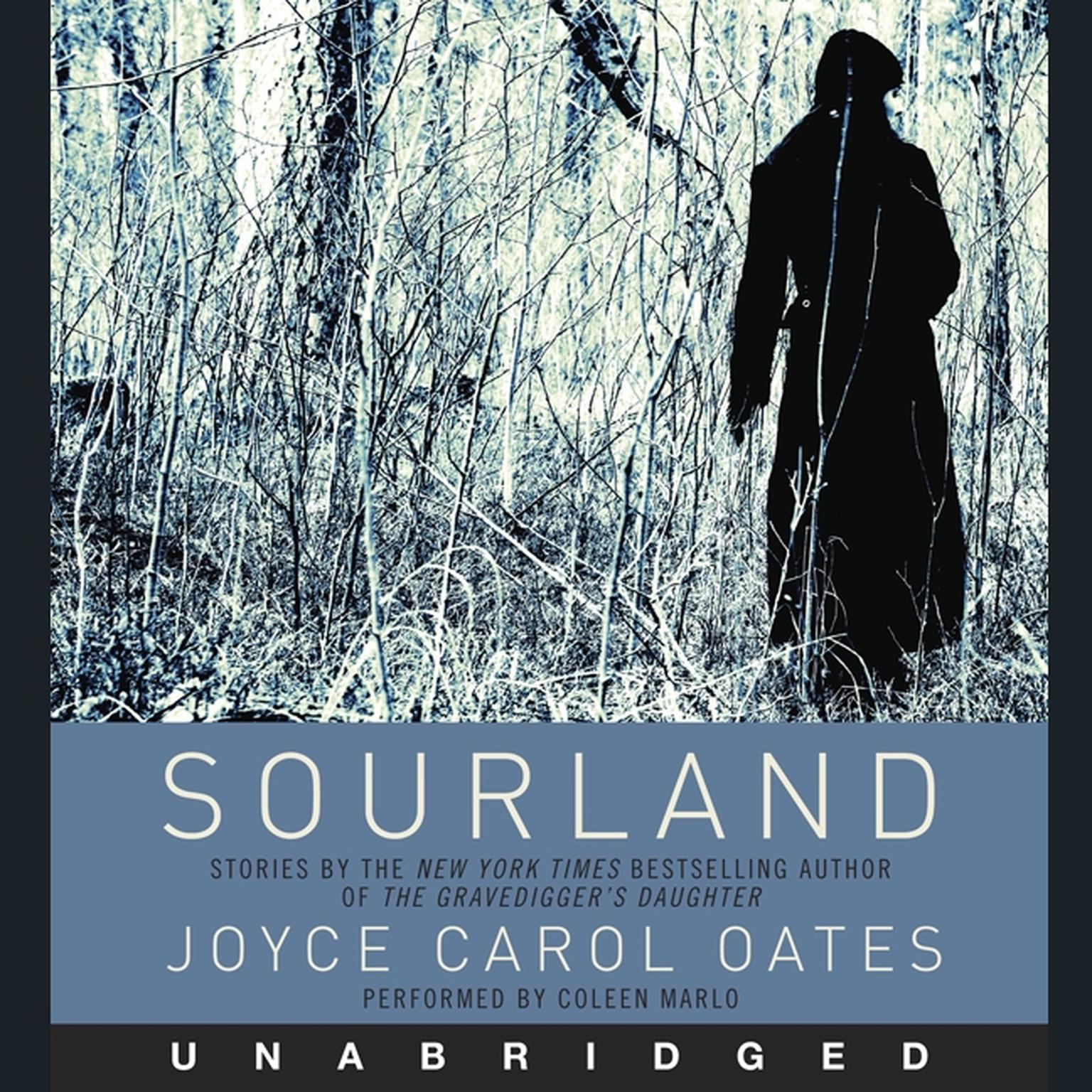 Printable Sourland: Stories of Loss, Grief, and Forgetting Audiobook Cover Art