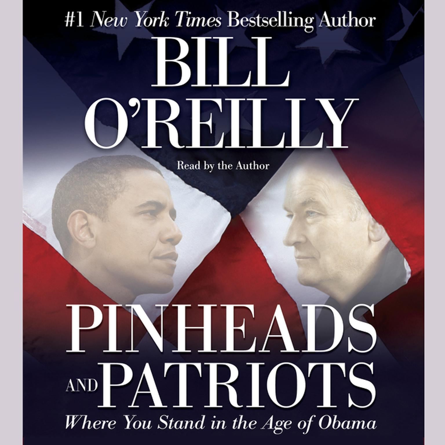 Printable Pinheads and Patriots: Where You Stand in the Age of Obama Audiobook Cover Art