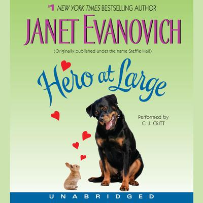 Hero at Large Audiobook, by