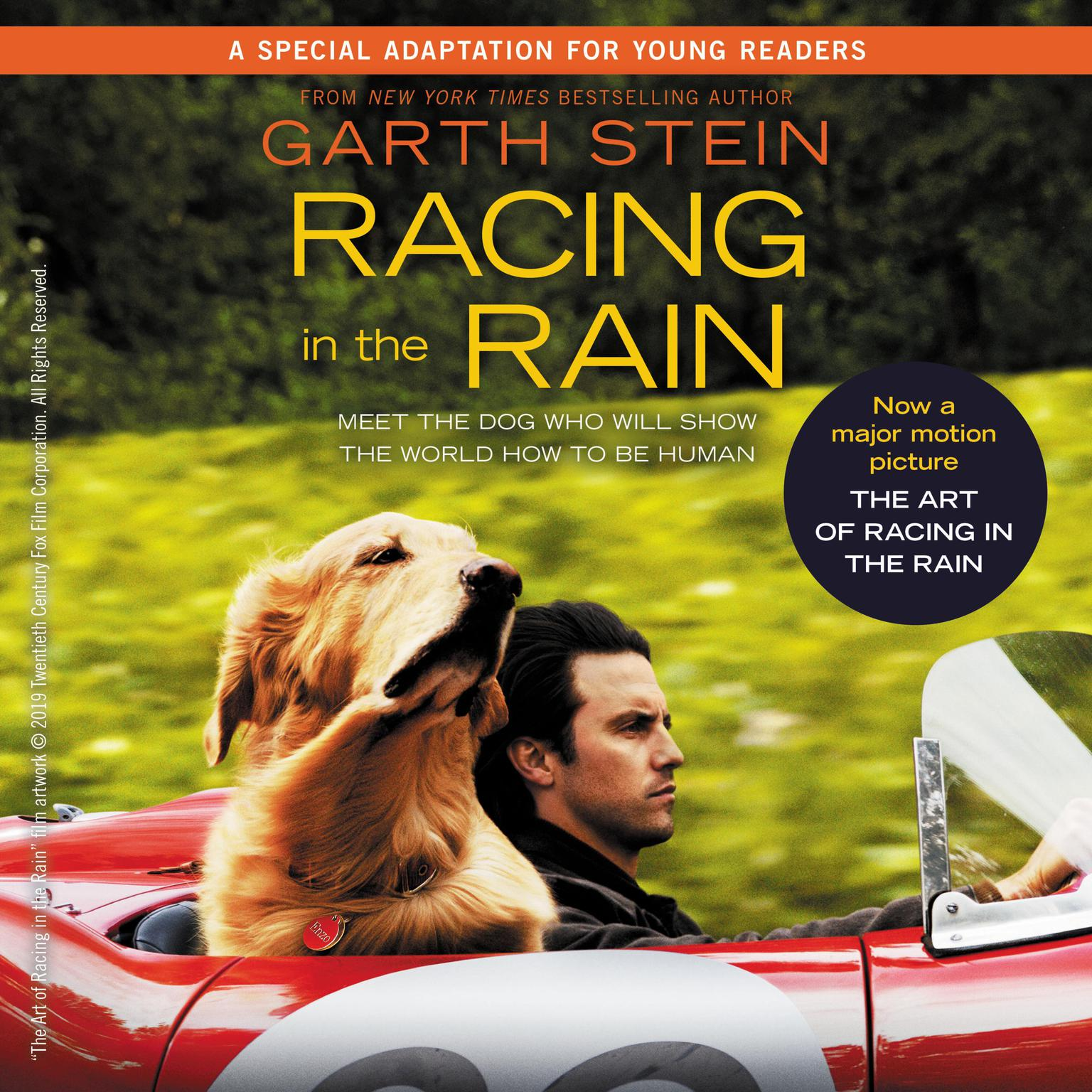 Printable Racing in the Rain Audiobook Cover Art