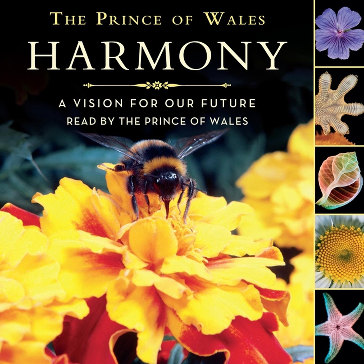 Printable Harmony Children's Edition: A Vision for Our Future Audiobook Cover Art