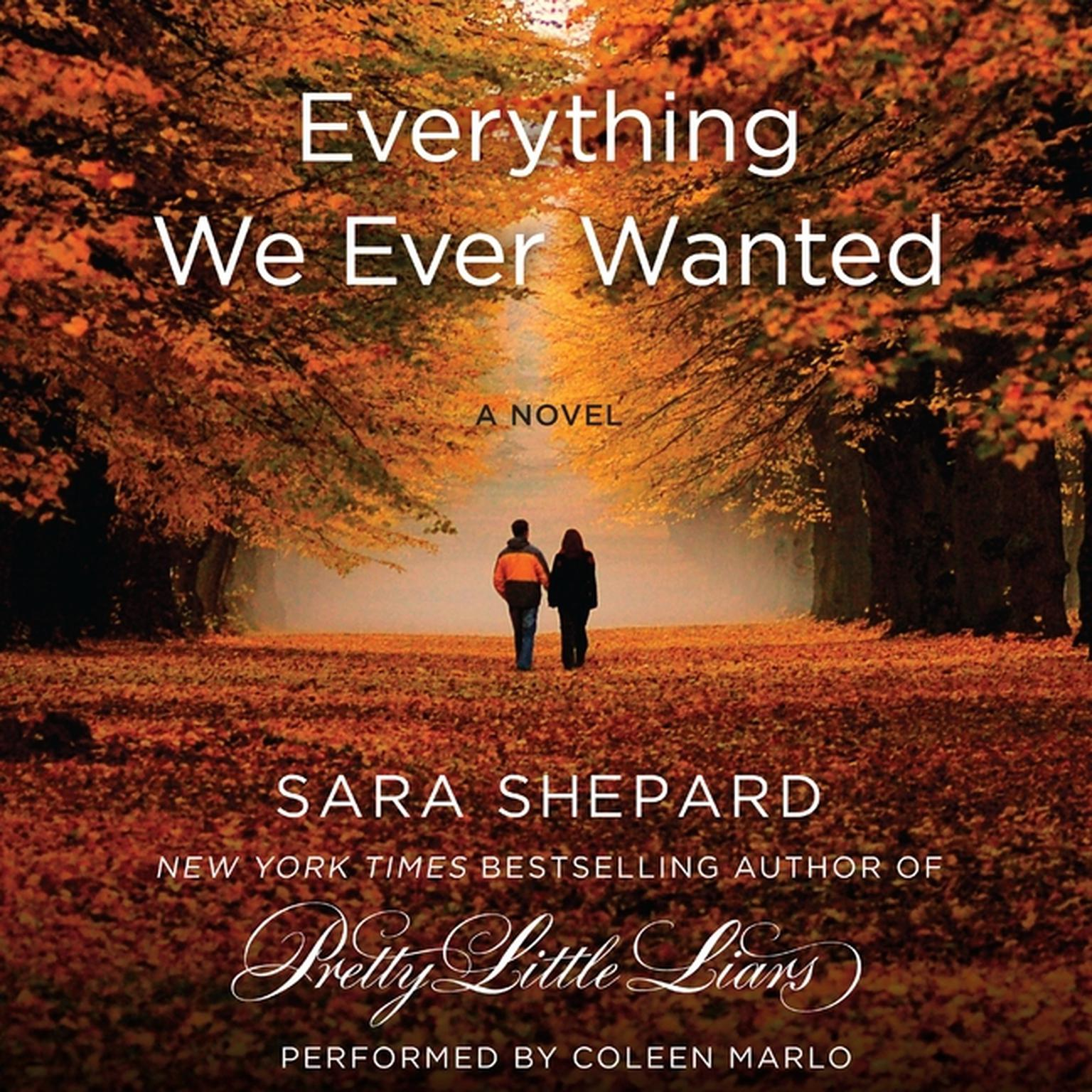 Printable Everything We Ever Wanted: A Novel Audiobook Cover Art
