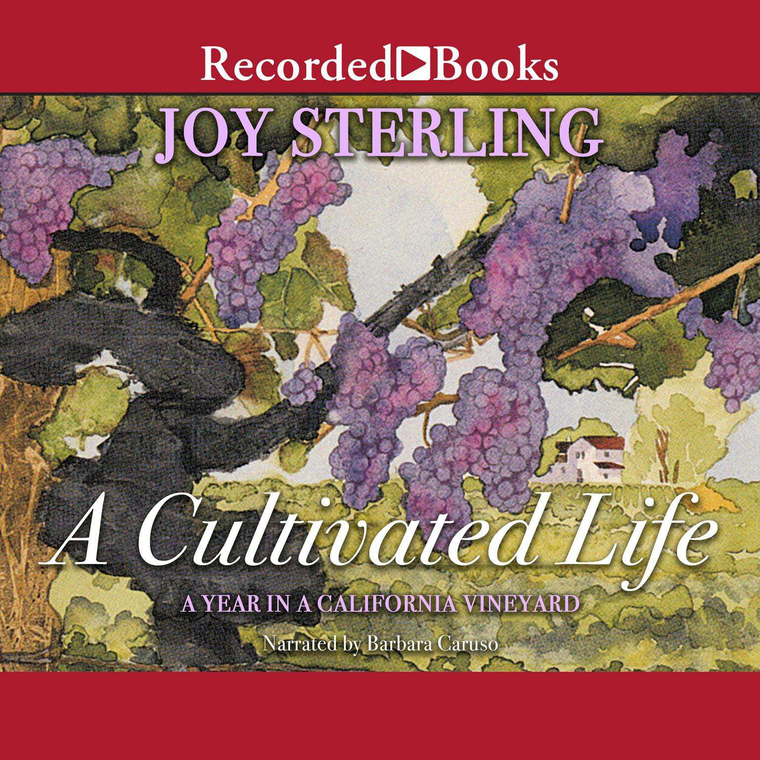 Printable A Cultivated Life: A Year in a California Vineyard Audiobook Cover Art