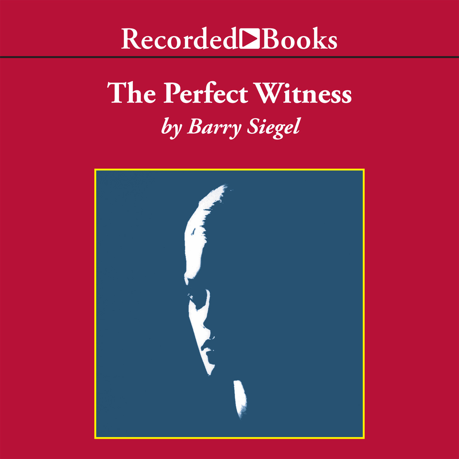 Printable The Perfect Witness Audiobook Cover Art
