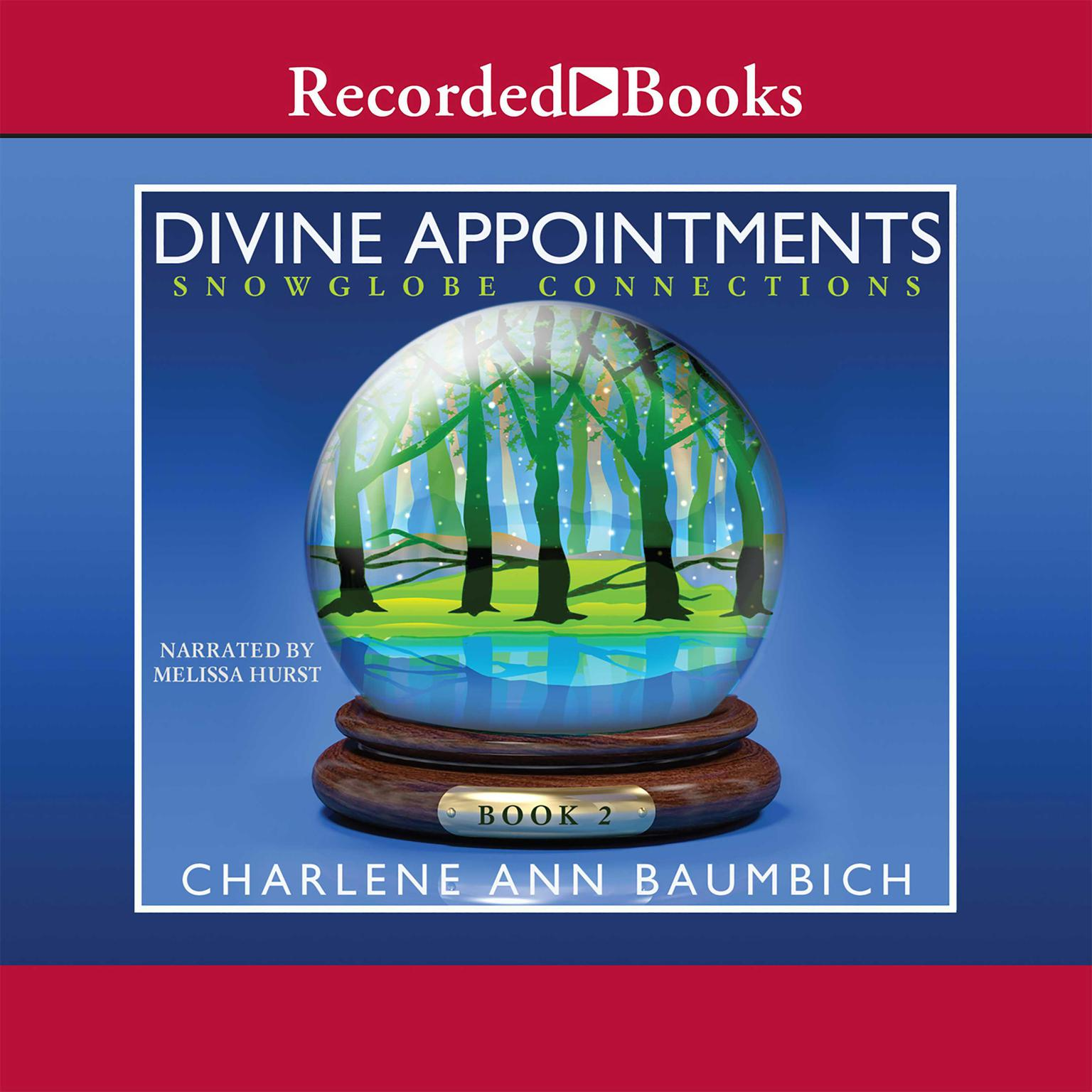 Printable Divine Appointments Audiobook Cover Art