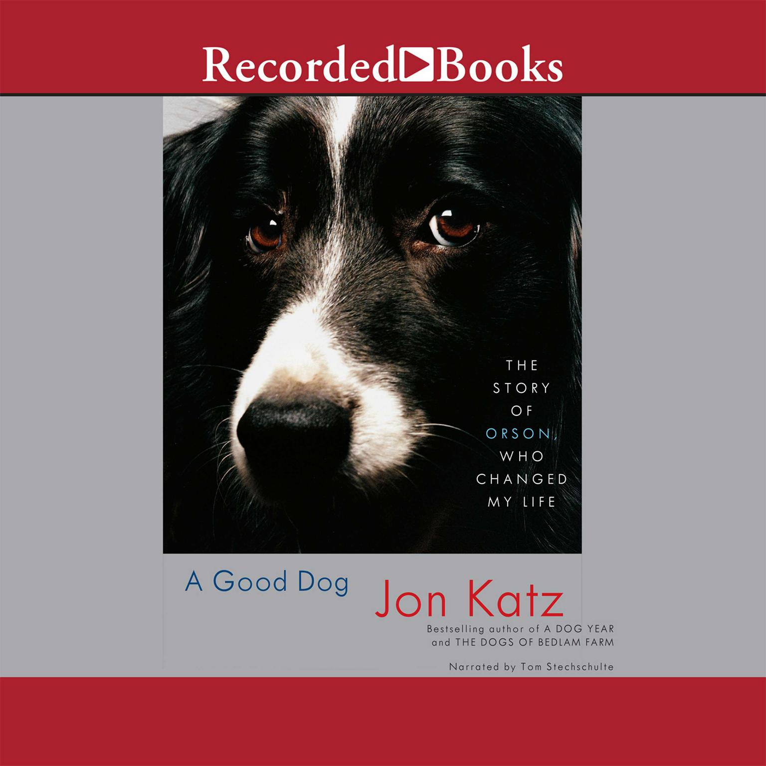 Printable A Good Dog: The Story of Orson, Who Changed My Life Audiobook Cover Art