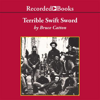 Terrible Swift Sword Audiobook, by Bruce Catton
