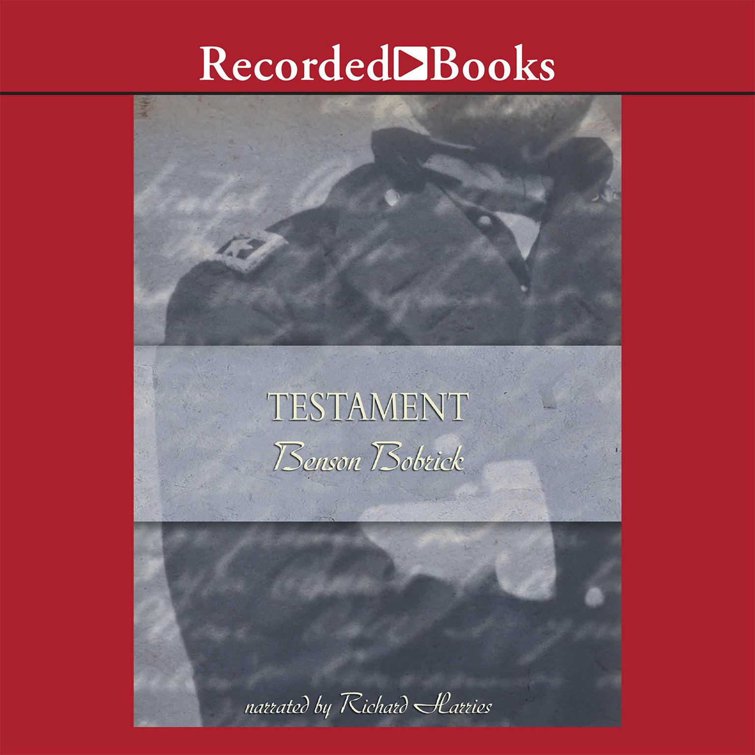Printable Testament: A Soldier's Story of the Civil War Audiobook Cover Art