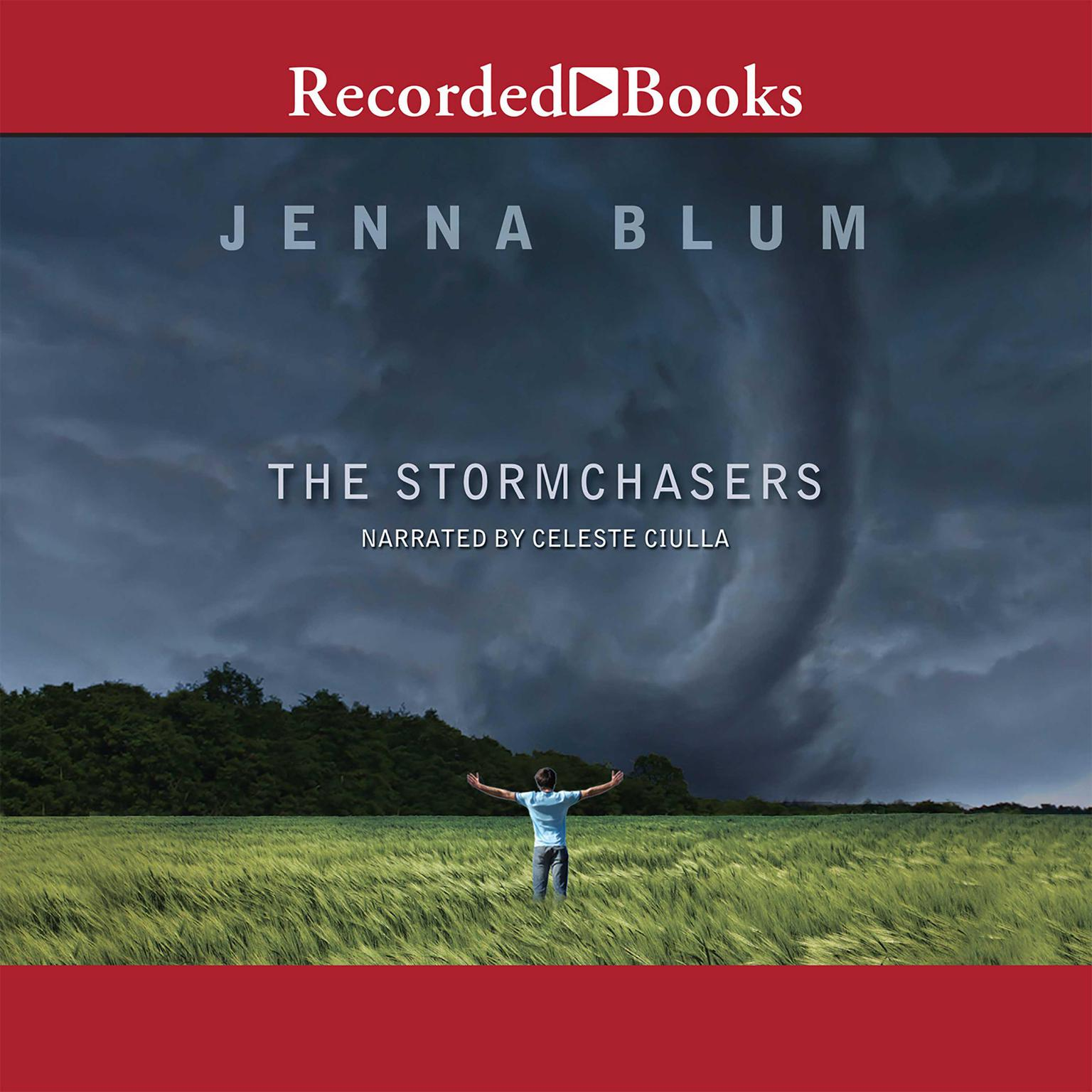 Printable The Stormchasers: A Novel Audiobook Cover Art