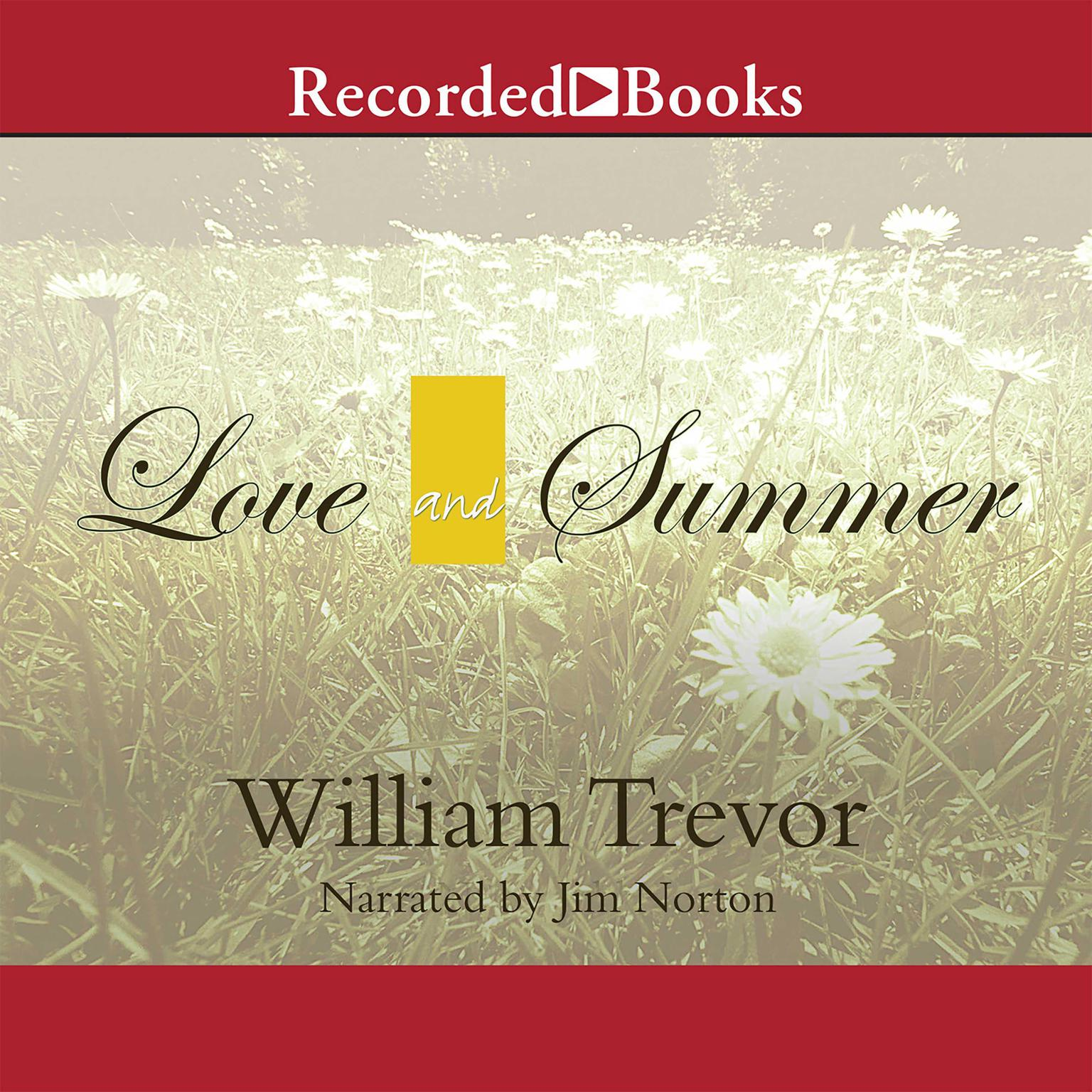 Printable Love and Summer Audiobook Cover Art