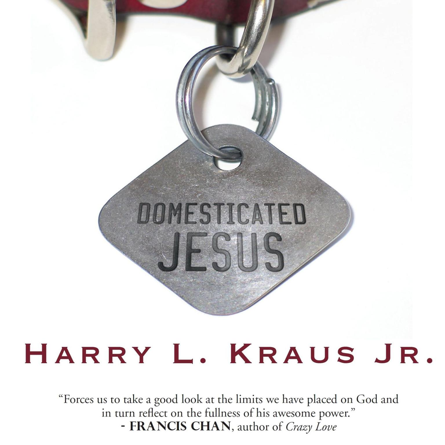 Printable Domesticated Jesus Audiobook Cover Art