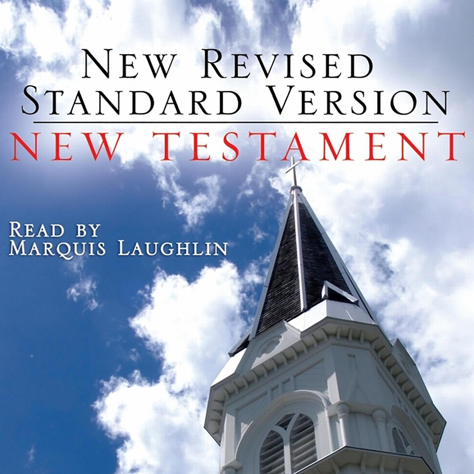 Printable New Revised Standard Version: New Testament Audiobook Cover Art