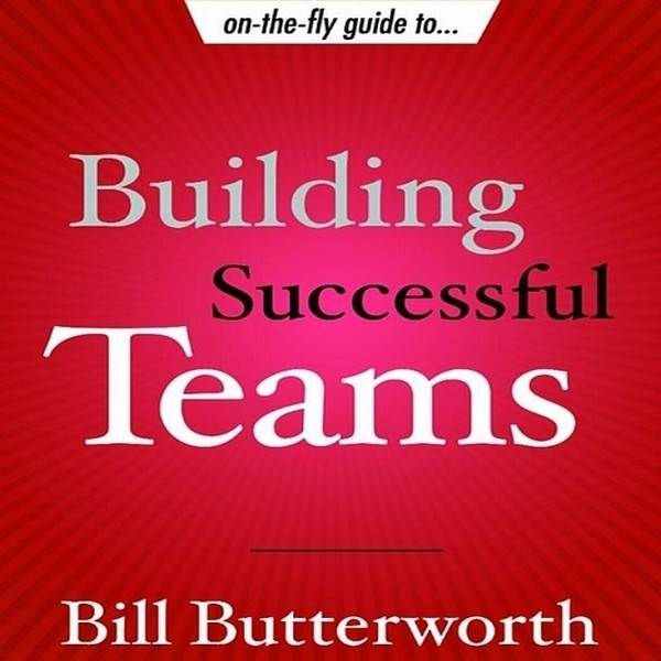 Printable On the Fly Guide to Building Successful Teams Audiobook Cover Art