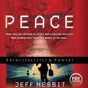Peace Audiobook, by Jeff Nesbit