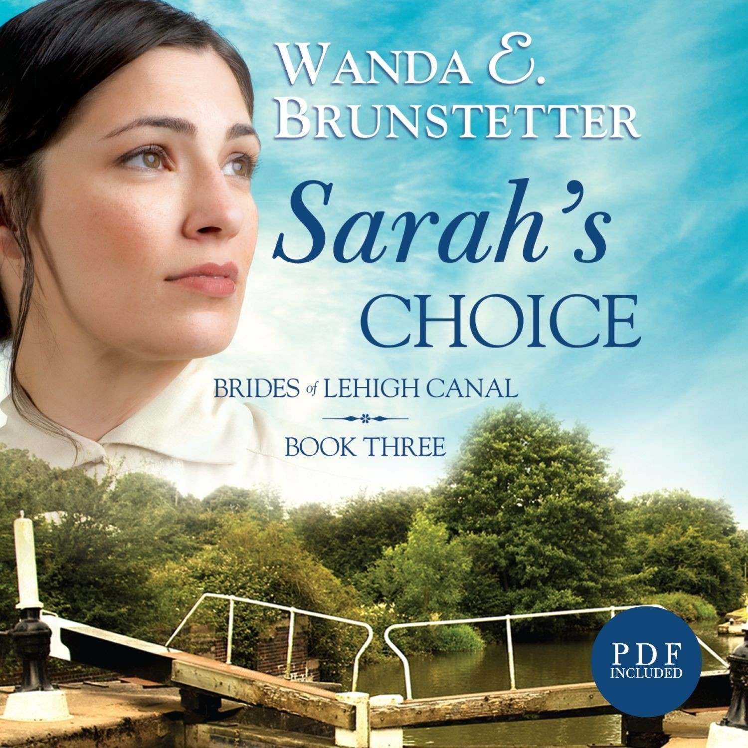 Printable Sarah's Choice Audiobook Cover Art