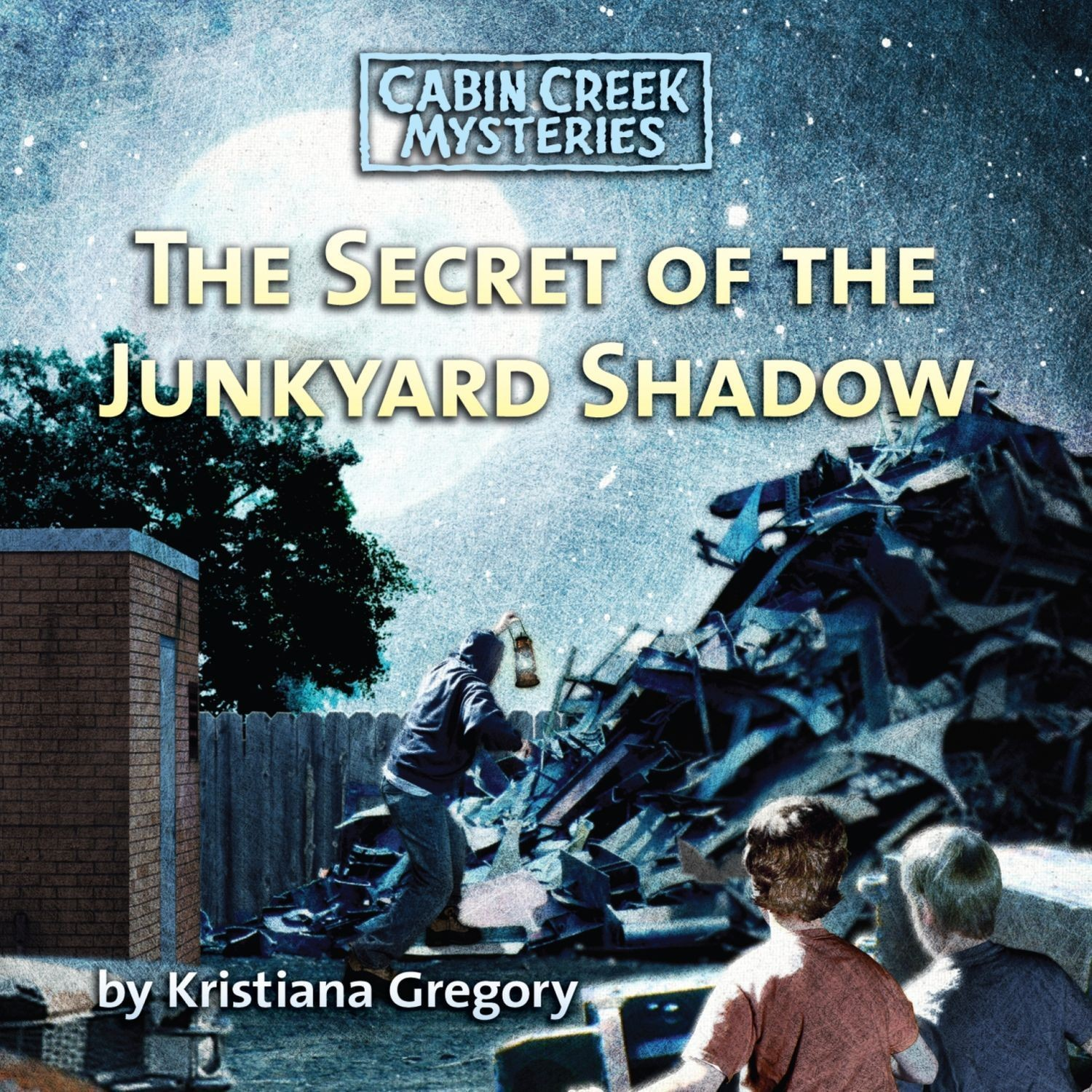 Printable The Secret of the Junkyard Shadow Audiobook Cover Art