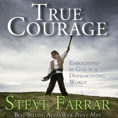 True Courage: Emboldened by God in a Disheartening World Audiobook, by Steve Farrar