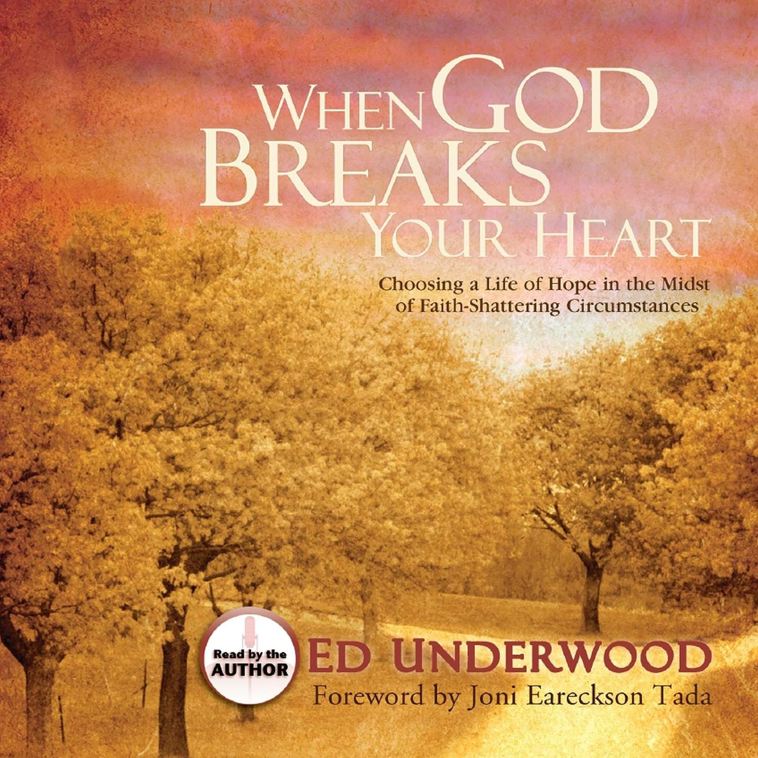 Printable When God Breaks Your Heart: Choosing Hope in the Midst of Faith-Shattering Circumstances Audiobook Cover Art
