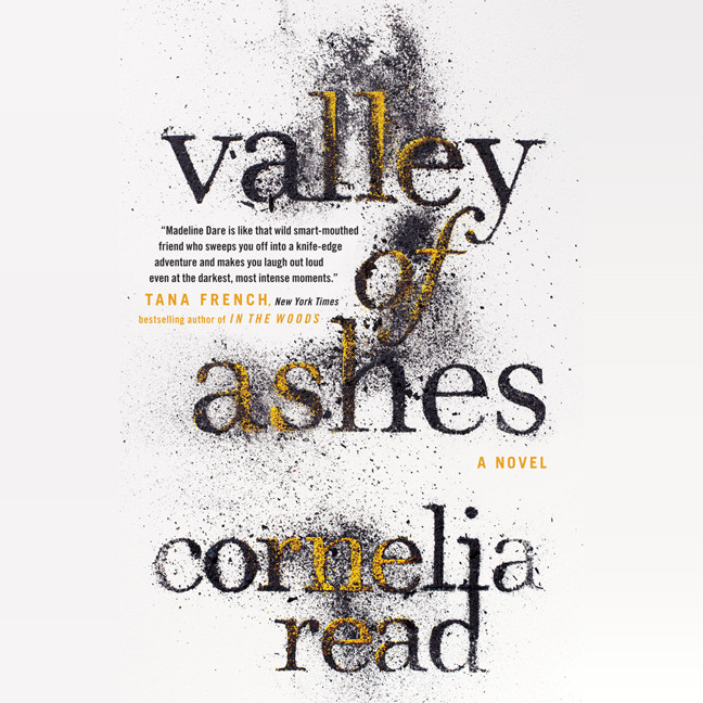 Printable Valley of Ashes Audiobook Cover Art