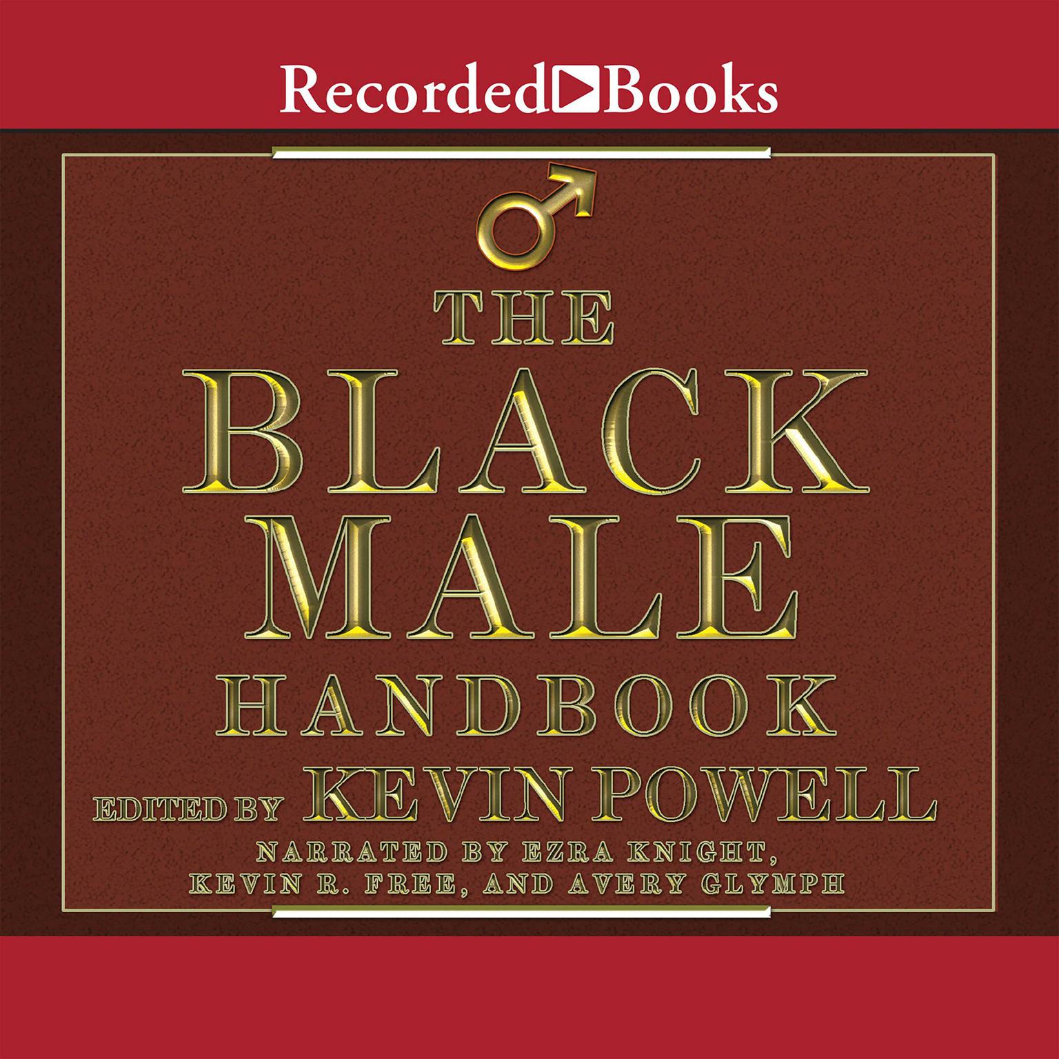 Printable The Black Male Handbook: A Blueprint for Life Audiobook Cover Art