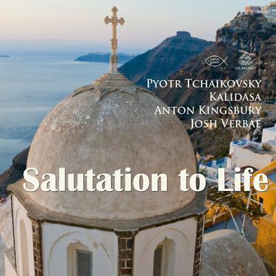 Salutation to Life Audiobook, by Anton Kingsbury