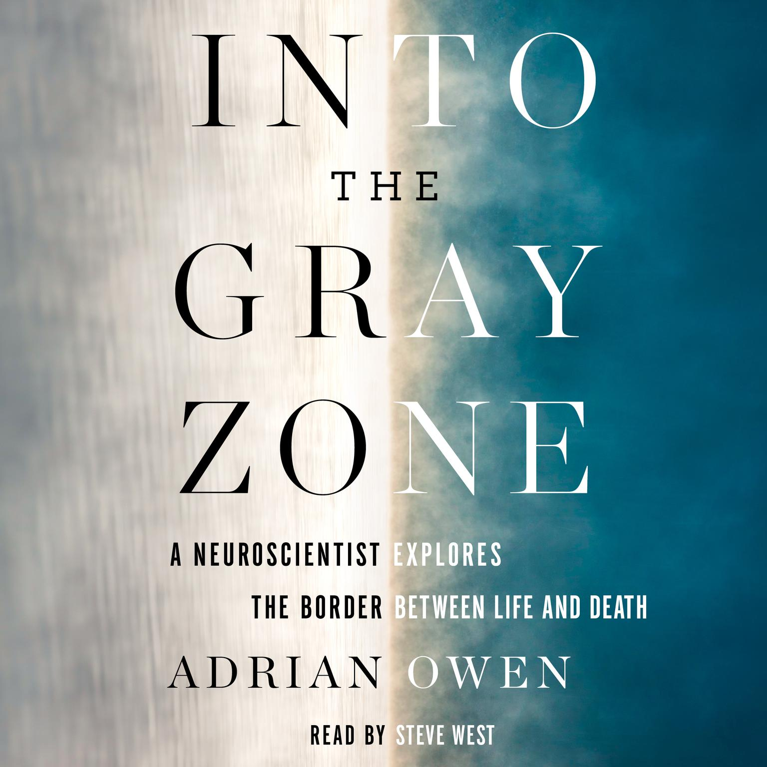 Printable Into the Gray Zone: A Neuroscientist Explores the Border Between Life and Death Audiobook Cover Art