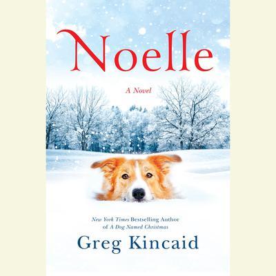 Noelle: A Novel Audiobook, by Greg Kincaid