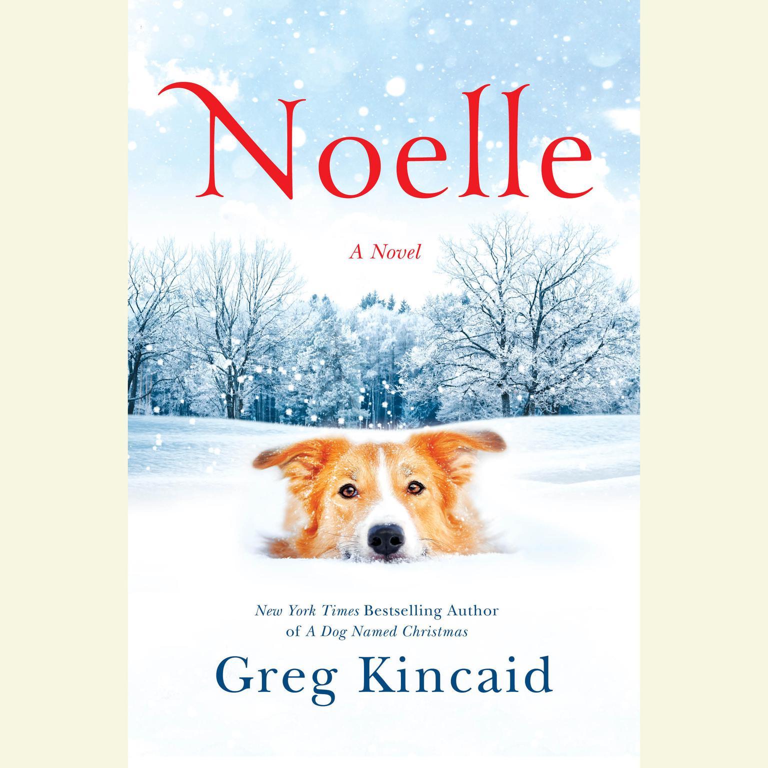 Printable Noelle: A Novel Audiobook Cover Art