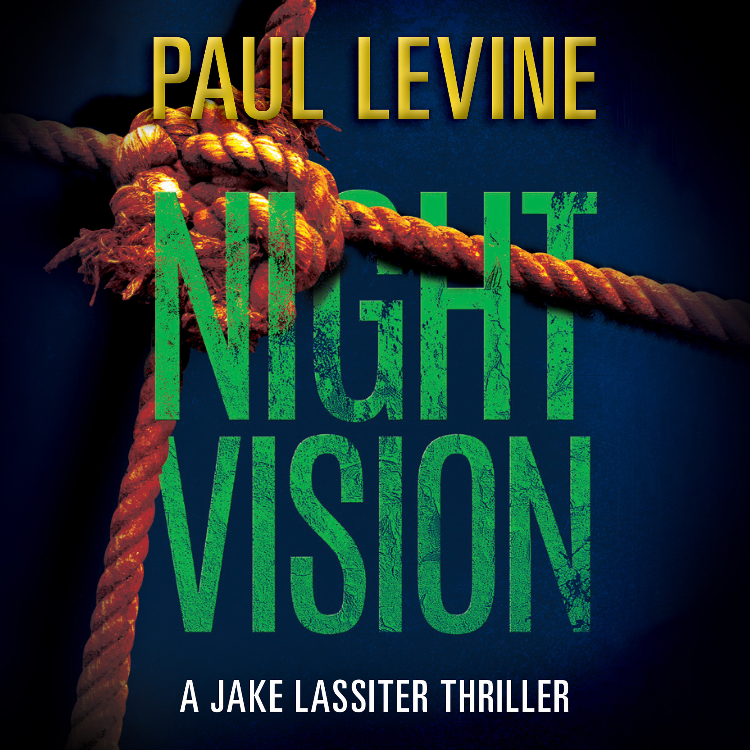 Printable Night Vision Audiobook Cover Art