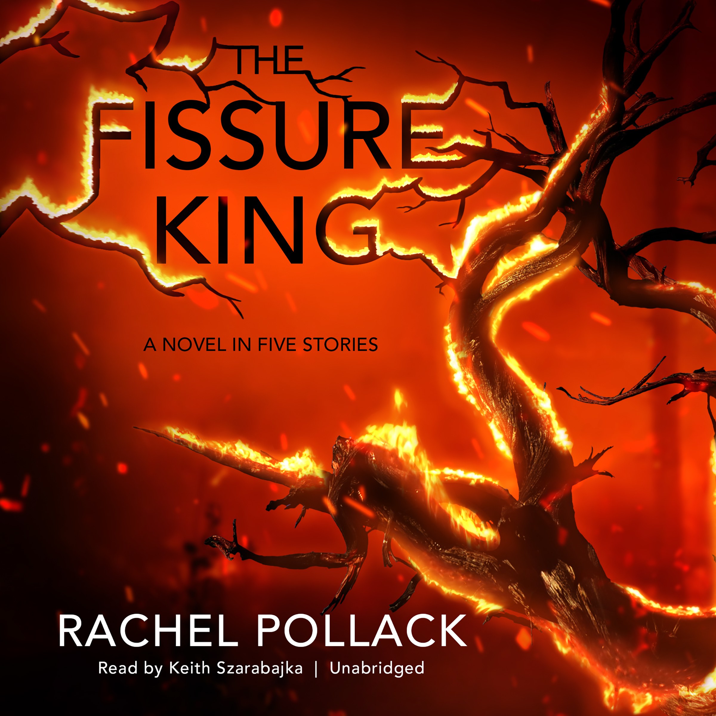 Printable The Fissure King: A Novel in Five Stories Audiobook Cover Art