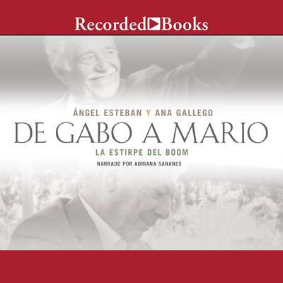 De Gabo a Mario: Una breve historia del boom latinoamericano Audiobook, by angel Esteban